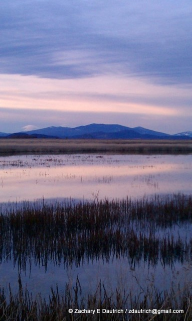 Lower Klamath Wildlife Refuge w Mt McLoughlin volcano in background