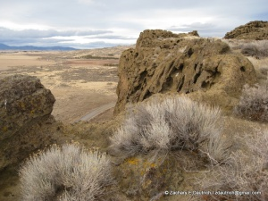 view from Petroglyph Point Lava Beds Nat Mon