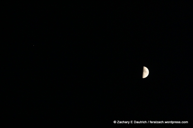 quarter moon and jupiter